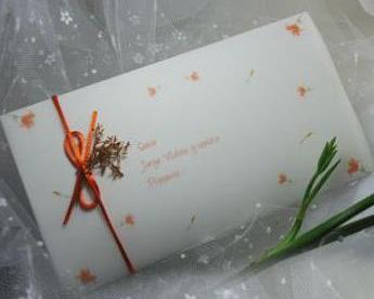 Invitación - Parte de Matrimonio Punto Celeste