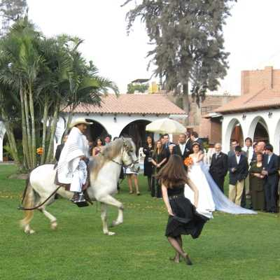 caballo_de_paso_boda