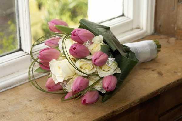 Tulipanes de colores románticos